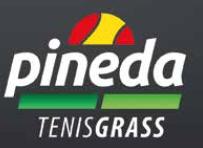 logo pineda